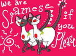 We Are Siamese by jactinglim