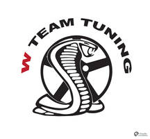 W Team Tuning Logo by Dredmix