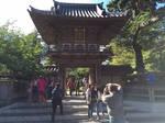 the tea Garden gate