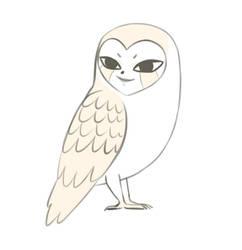 Owl Zofis