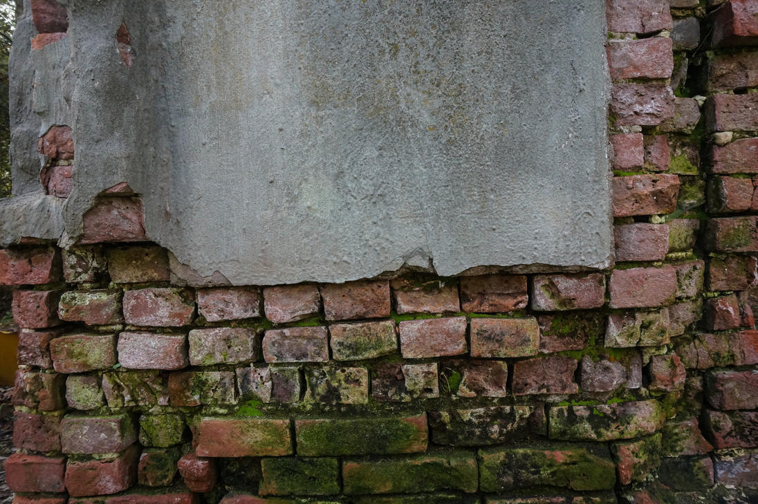 Decaying 19th Century Plastered Brick Wall Texture 3