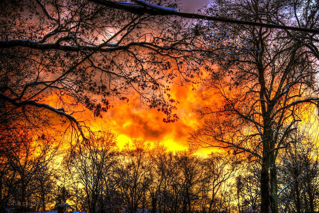 Blaze by SharpPhotoStudio
