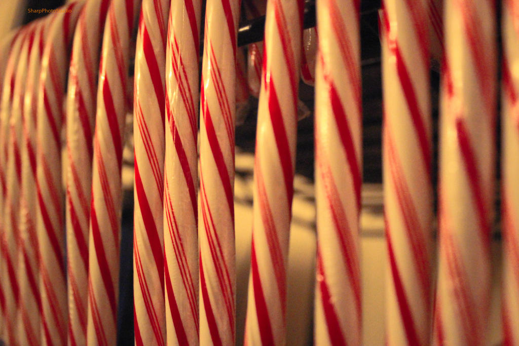 Day 5: Sweets with Stripes by SharpPhotoStudio