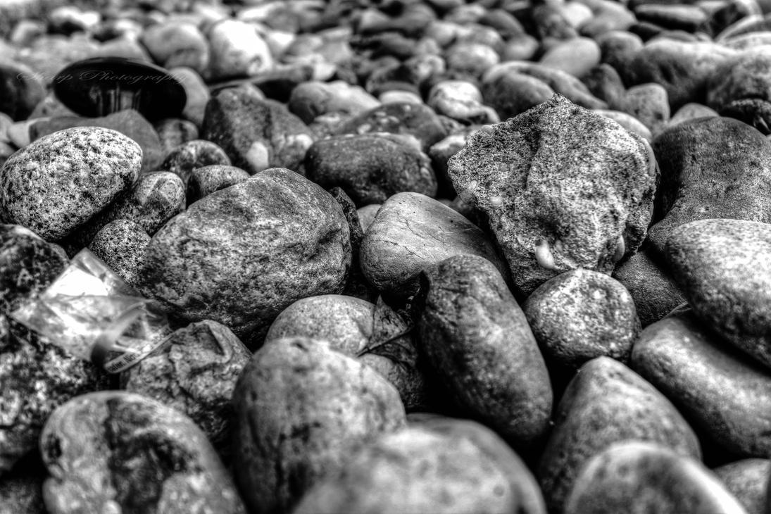 Day 8: Textures by SharpPhotoStudio
