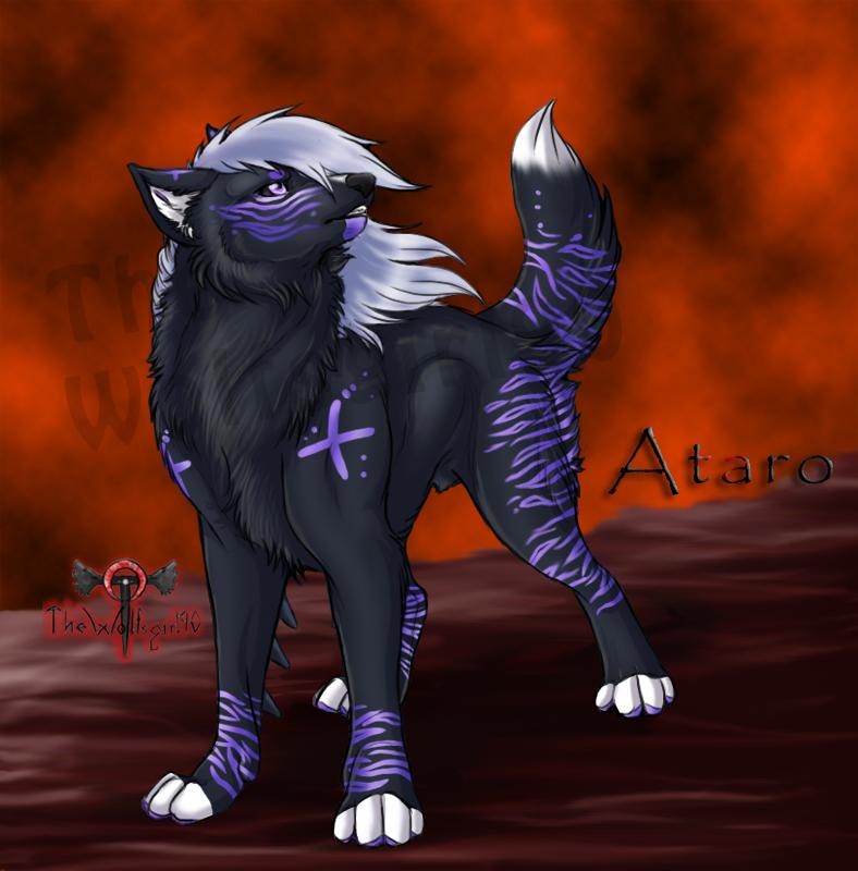 Ataro My Pantha wolf by TheWolfsgirl90