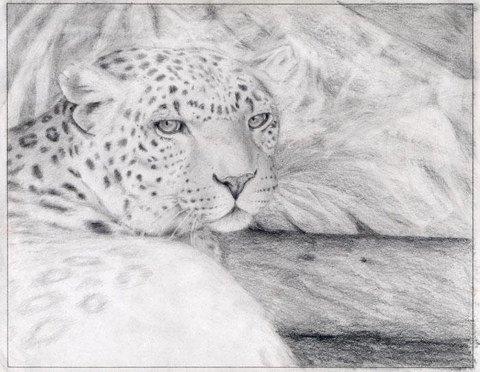 Almost finished Leopard by calypsokitty