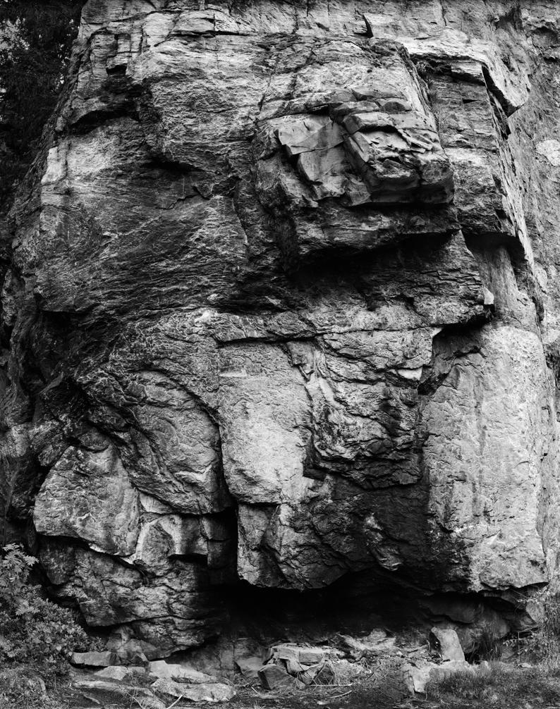 - The Face - by TomFindahl