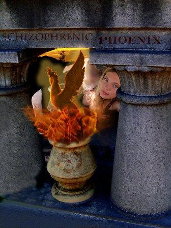 schizophrenicphoenix's Profile Picture