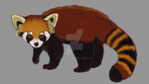 Semi real red panda study