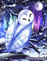 Snowy Owl by Animechristy