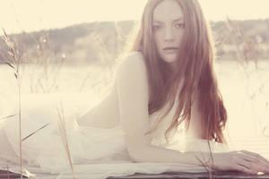 Autumn Sun III by annikenhannevik