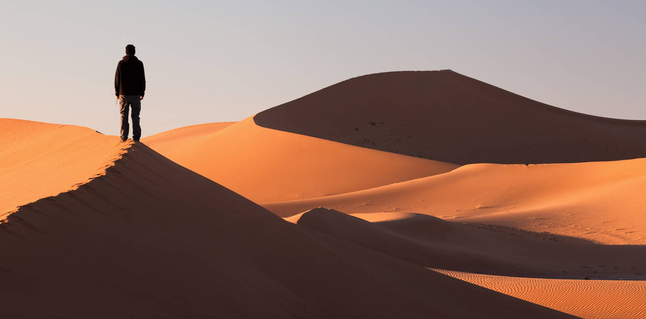 The Shadow in the Desert by JamesHackland