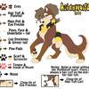Character Sheet: AzianWolfDoll by azianwolfdoll