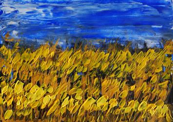 Northumbrian wheatfield by davepuls