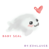 Baby seal by konluver