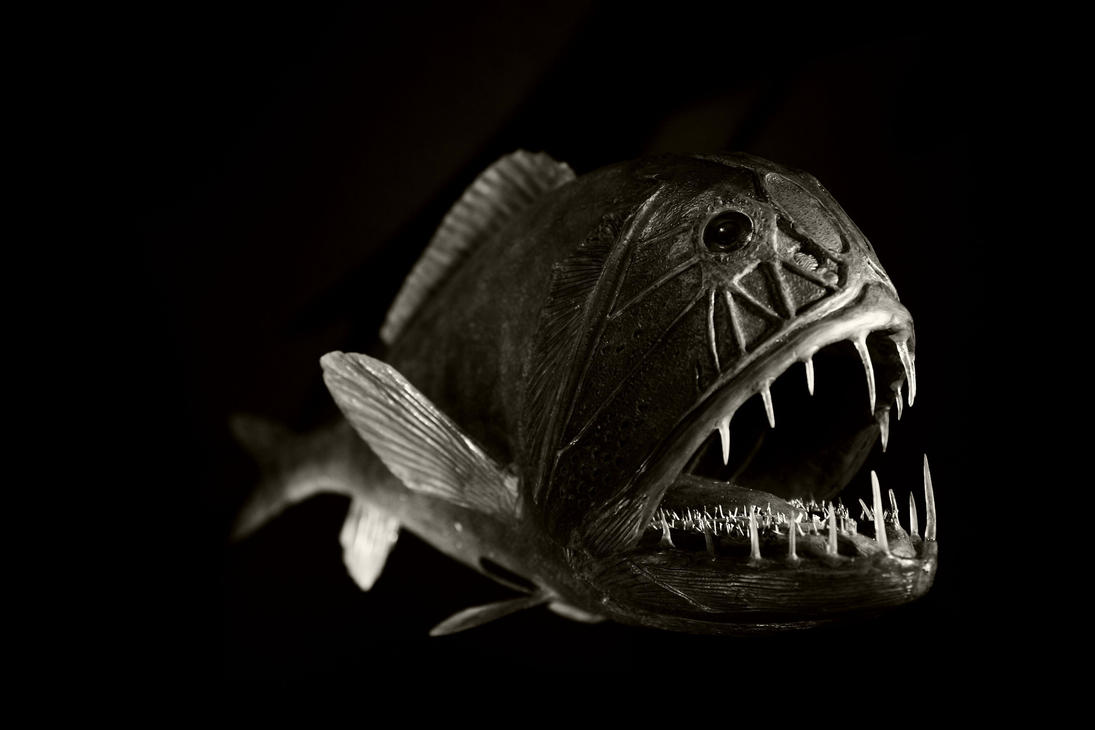 Another deep sea fish by roswell1947 on deviantart for Deep sea fishes