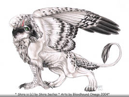 Shira as a Gryphon by gryphlovers