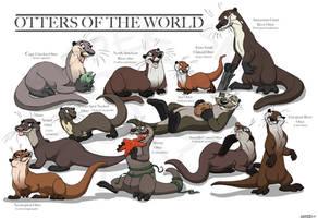 Otter Species by Kipper-Snax