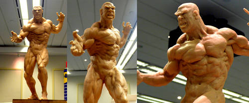 Hulk Lou Ferrigno part 3
