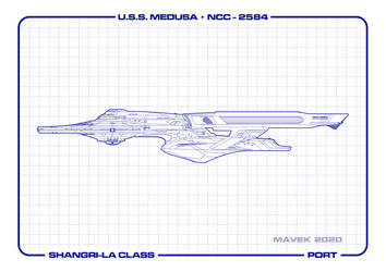 U.S.S. Medusa Port