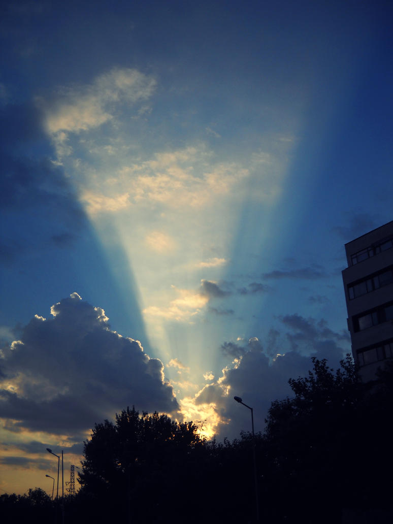 sun rays by dolfii