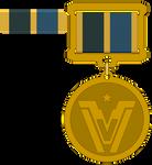 Vanguard Service Award