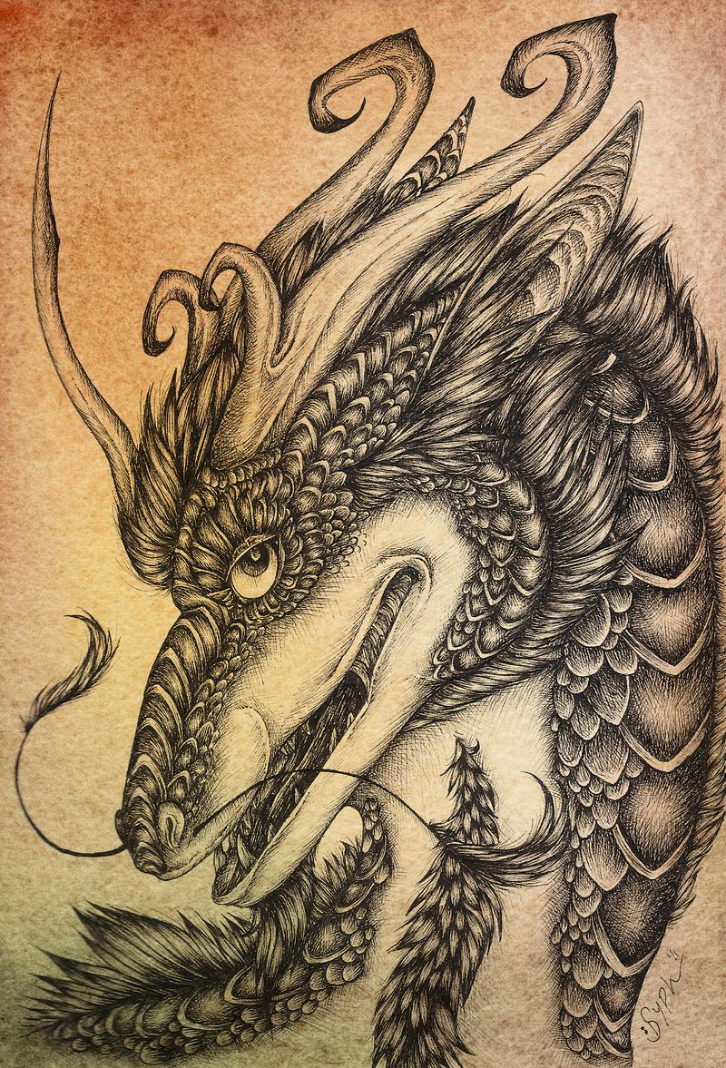 Syphellium's Profile Picture