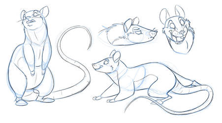 Awwww Rats by secoh2000