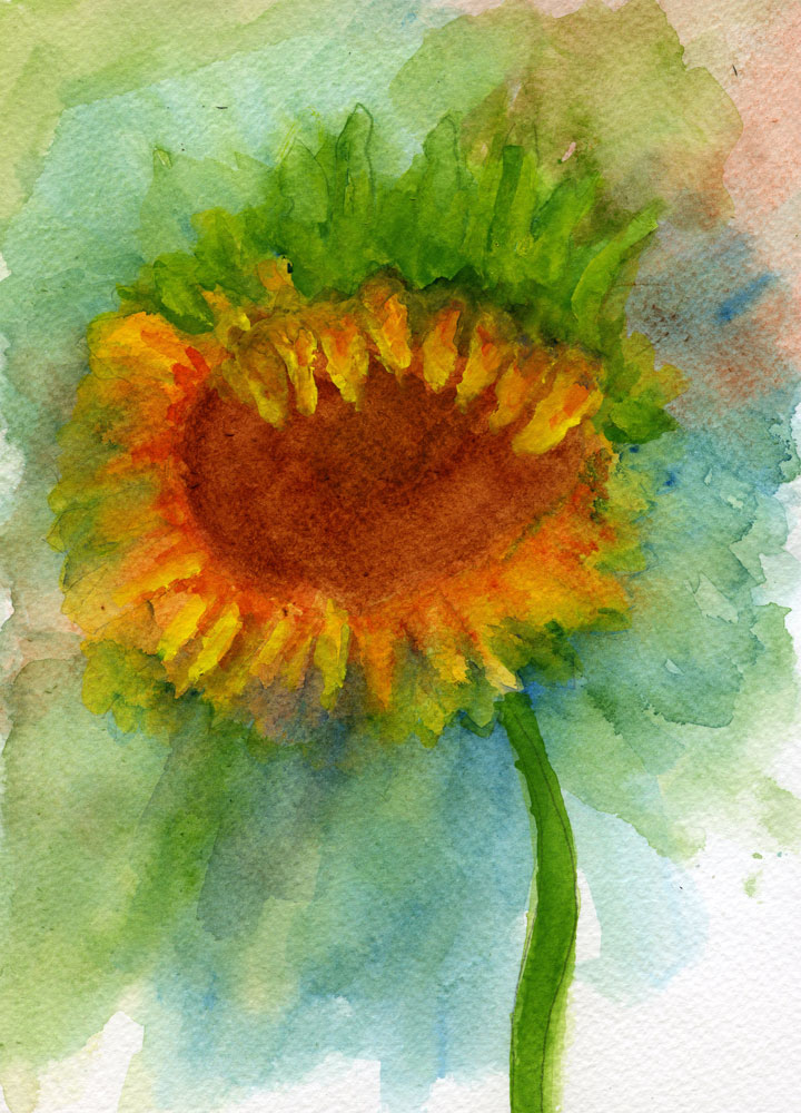 Sunflower by rev-Jesse-C