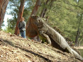 iguanadon attacks by kitsolidor
