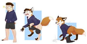 COM Foxy