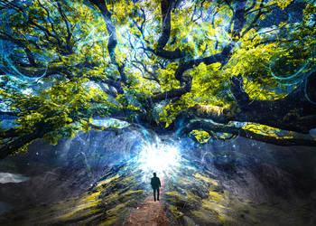 Way Of Tree