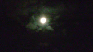 THE FULL MOON 1