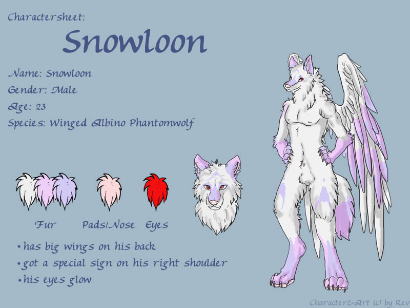 Charactersheet Snowloon by Phantom--Wolf