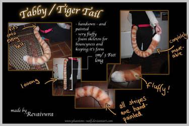 Tabby  Tiger Tail by Phantom--Wolf