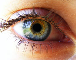 The eye by attilapele