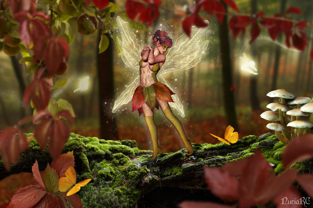 Autumn in the Fairy Forest by nrcArt