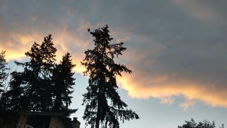The Sunset lining