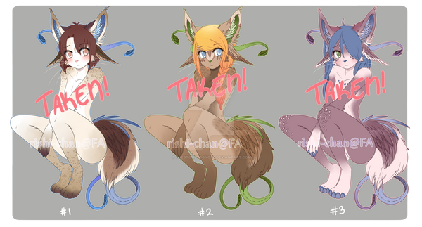 featherbrain auction: batch 01 (closed) by thestoneycoyote