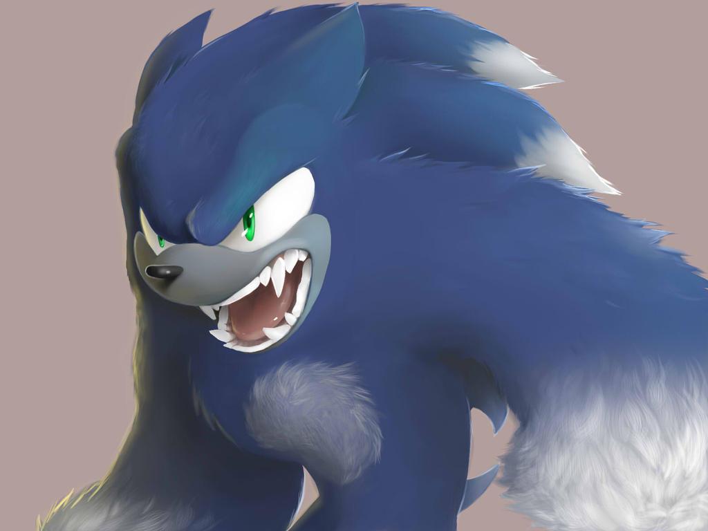 Sonic the werehog by limirina