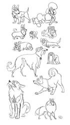 Merlock dog transformations