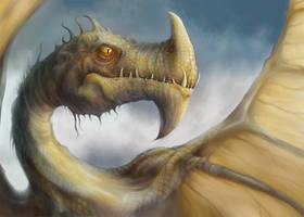 Dragon by JohnMalcolm1970