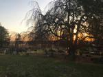 Cemetery Sunrise 1 Stock