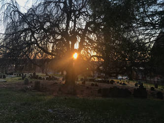 Cemetery Sunrise 2 Stock by AliDee33