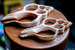 Seashell Slices