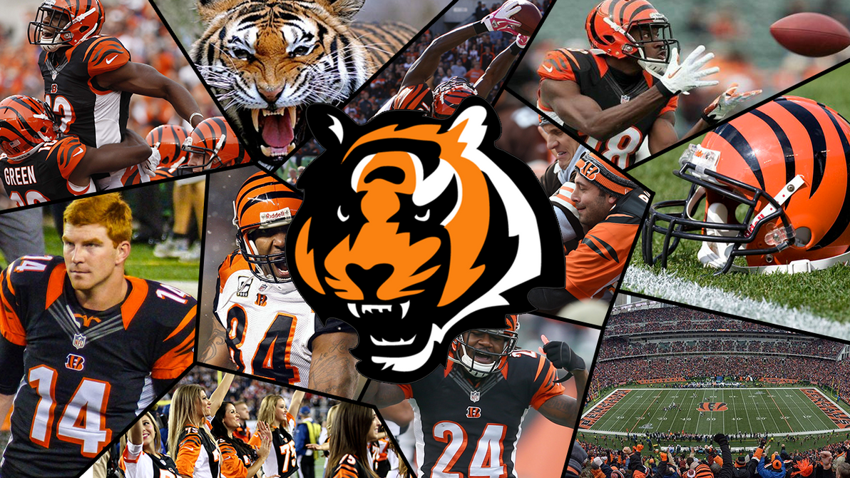 bengals wallpaper by mason1204 on deviantart