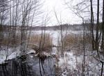 Winter Landscape-20