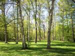 Spring Park-3