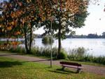 Autumn Lake-43
