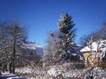 Winter Town-34